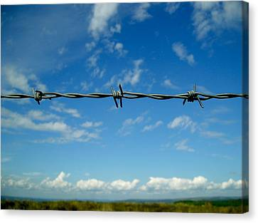 Barbed Sky Canvas Print by Nina Ficur Feenan