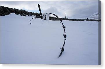 Barbed Wire Canvas Print by Riley Handforth