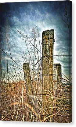 Barbwire Fences Canvas Print