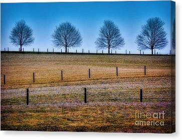 Bare Trees And Fence Posts Canvas Print by Henry Kowalski