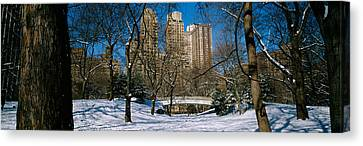 Bare Trees With Buildings Canvas Print by Panoramic Images