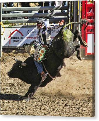 Bareback Bull Riding Canvas Print