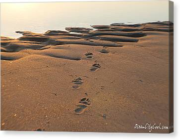 Barefoot In Sand Canvas Print by Robert Banach