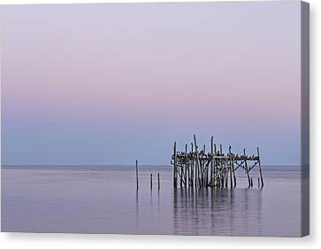 Barely Standing Canvas Print by Jon Glaser
