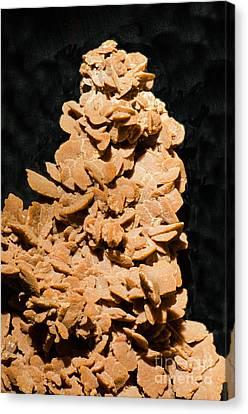 Inorganic Solid Canvas Print - Barite by Millard H. Sharp