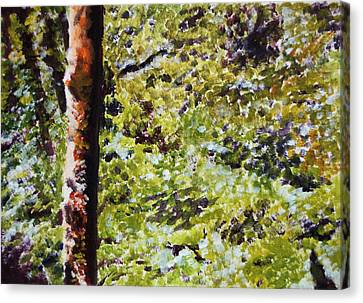 Bark IIi Canvas Print
