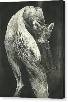 Bark Canvas Print by Rebecca Bourke