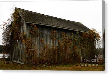 Barn 2 Canvas Print by Andrea Anderegg