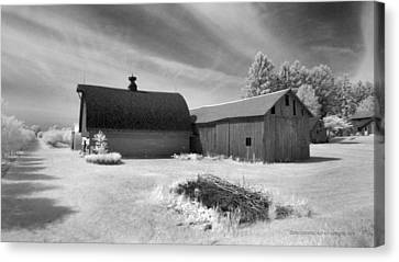 Barn And Grove On Hwy Z Canvas Print by Stephen Mack