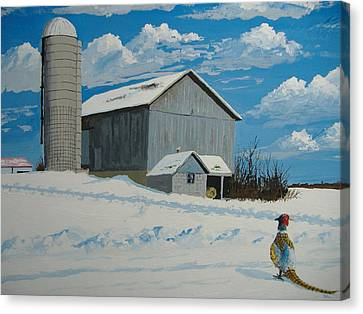 Barn And Pheasant Canvas Print by Norm Starks