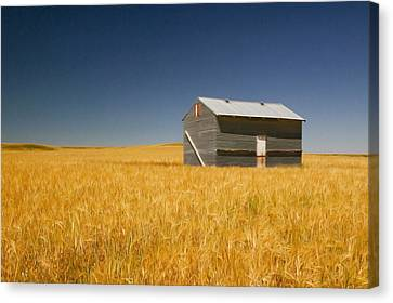 Barn At Choteau Montana Painted Canvas Print by Rich Franco