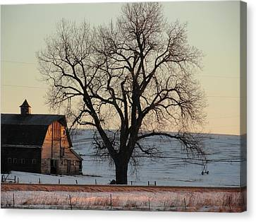 Barn At Sunrise Canvas Print