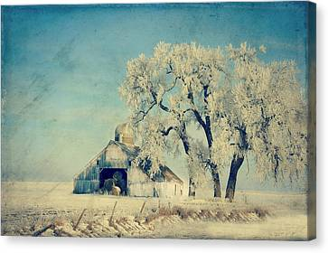 Barn Frosty Trees Canvas Print by Julie Hamilton