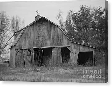 barn in Kentucky  no 5 Canvas Print by Dwight Cook