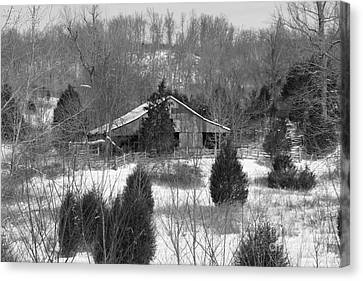 Barn In Kentucky No 12 Canvas Print by Dwight Cook
