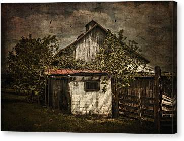 Barn In Morning Light Canvas Print by Kathy Jennings