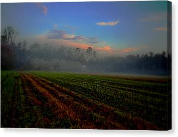Barn In The Mist Canvas Print by John Harding
