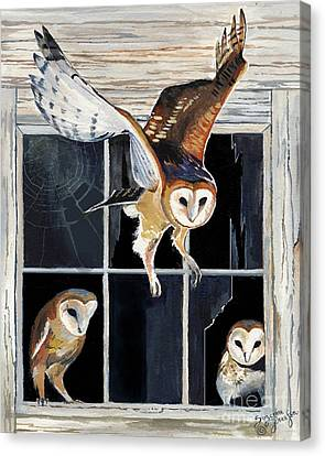 Barn Owl Family Canvas Print by Suzanne Schaefer