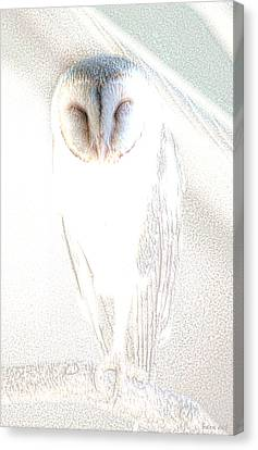 Canvas Print featuring the photograph Barn Owl by Holly Kempe