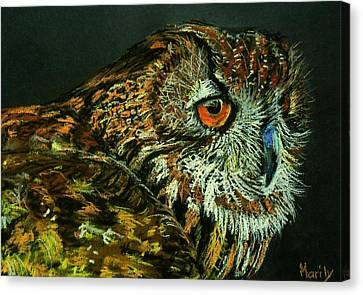 Barn Owl Canvas Print by Marily Valkijainen