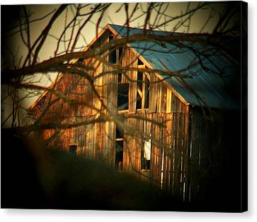 Barn Thru The Trees Canvas Print