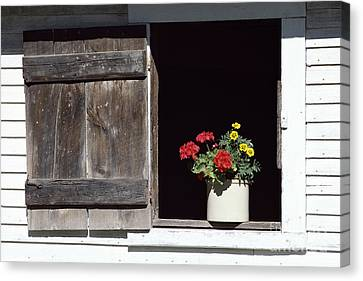 Barn Window Flowers Canvas Print by Alan L Graham
