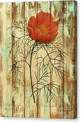 Barn Wood Texture Poppy Flower Botanical Art Canvas Print by Cranberry Sky