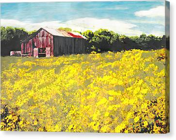 Barn Yellow Spring Fields Maryland Landscape Fine Art Painting Canvas Print