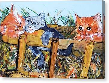 Barncats Canvas Print by Lucia Grilletto