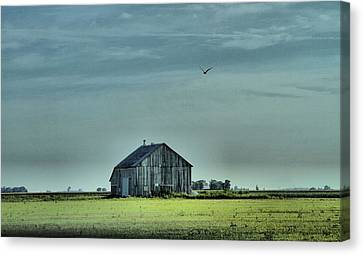 The Flight Home Canvas Print by Dan Sproul