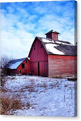 Barnstorm Canvas Print by Tom Druin