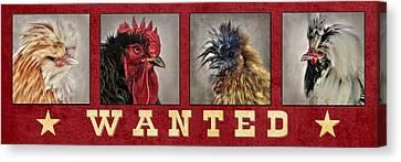 Barnyard Gang Wanted Canvas Print by Lori Deiter