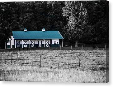 Barnyard Canvas Print by Shelby  Young
