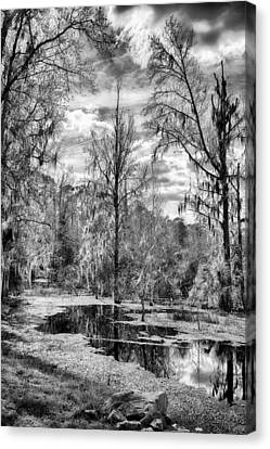 Canvas Print featuring the photograph Barr Hammock Preserve  by Howard Salmon