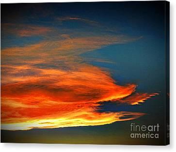 Barracuda Cloud Canvas Print by Phyllis Kaltenbach