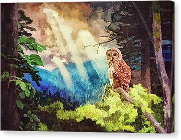 Barred Owl In The Mountains Canvas Print by Steven Llorca