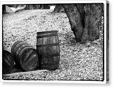 Barrels In The Woods Canvas Print by John Rizzuto