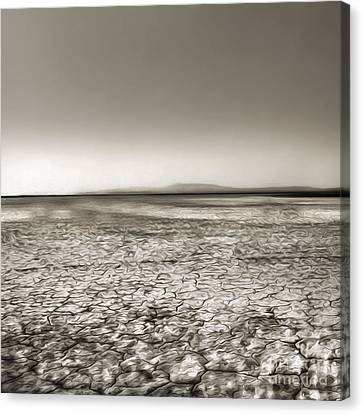 Barstow Dry Lake Bed  Canvas Print by Gregory Dyer