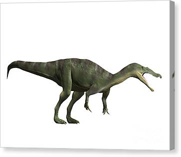 Baryonyx Walkeri, Early Cretaceous Canvas Print by Nobumichi Tamara