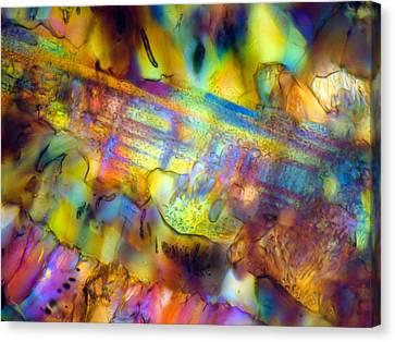Canvas Print - Basalt 0.16mm B 074 by Tom Phillips