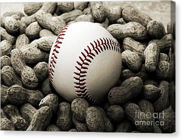 Baseball Season Edgy Bw 2 Canvas Print by Andee Design