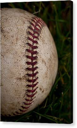 Baseball - The National Pastime Canvas Print by David Patterson