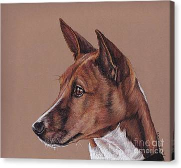 Basenji Canvas Print by Charlotte Yealey