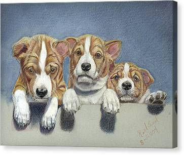 Basenji Puppies Canvas Print
