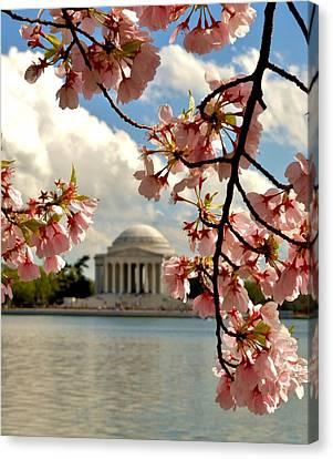 Basin Blossoms Canvas Print