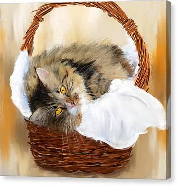 Basket Case Canvas Print by Lourry Legarde