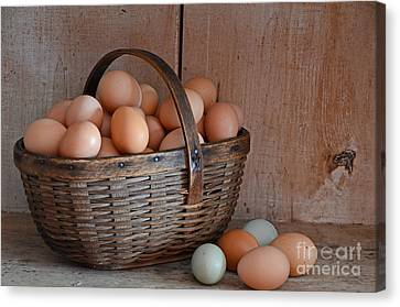 Basket Full Of Eggs Canvas Print by Mary Carol Story