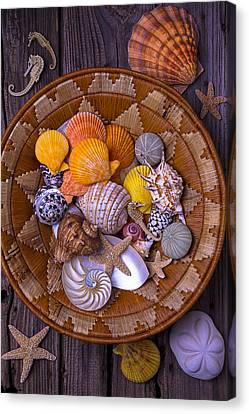 Nature Study Canvas Print - Basket Full Of Seashells by Garry Gay