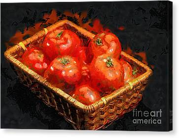 Basket With Only Intact Tomatoes Painting Canvas Print