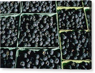 Baskets Of Blueberries Canvas Print by Panoramic Images